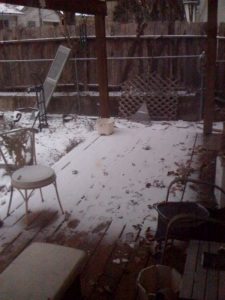 Snow on the back porch — a rare occurence